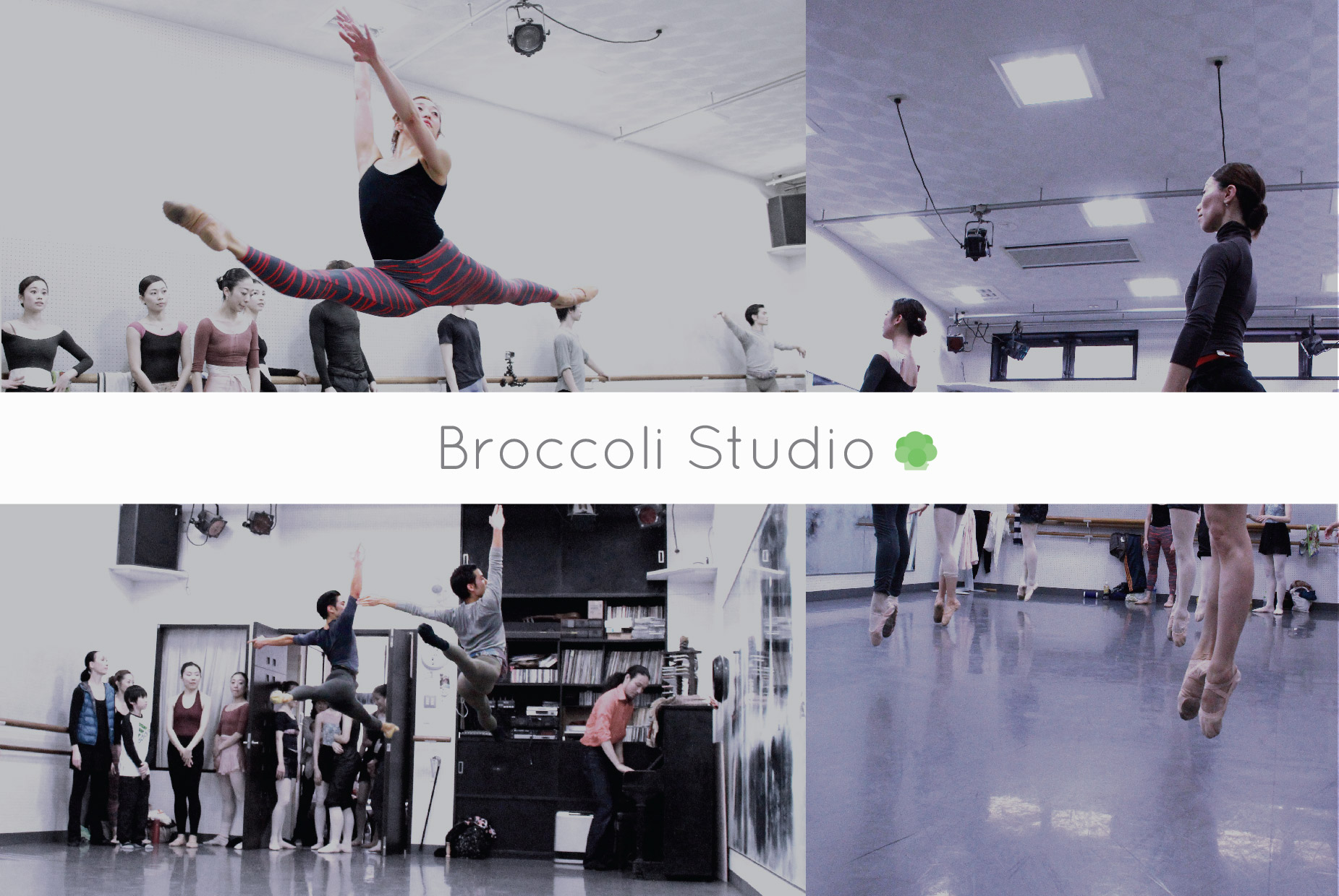 Broccoli Studio
